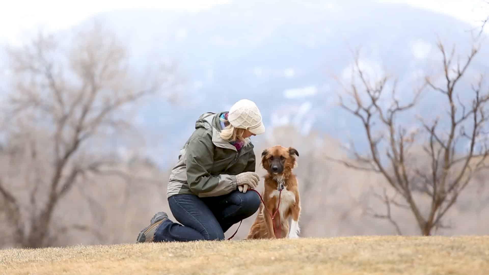 HPC Jessica Coversion Copywriting puppy mountains